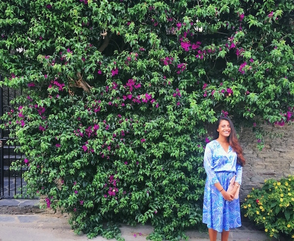 Bougainvillea everywhere!